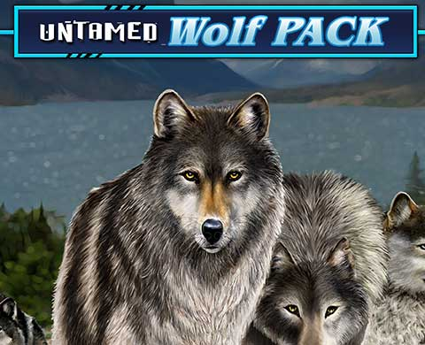 Best Game Ever I Played After Watching Movie Untamed Wolf Pack